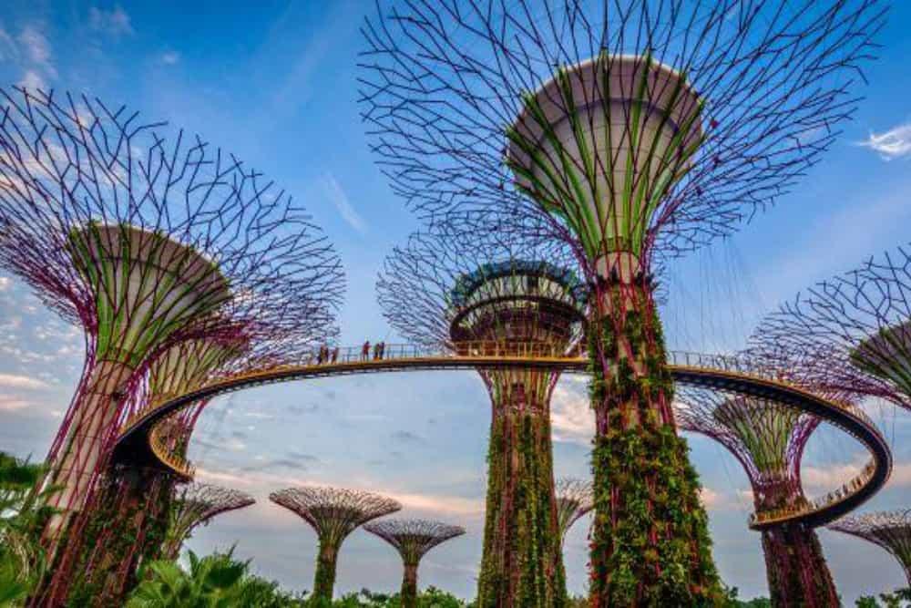 Heritage Race Singapore 4